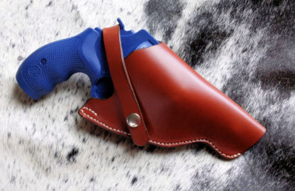Governor Holster
