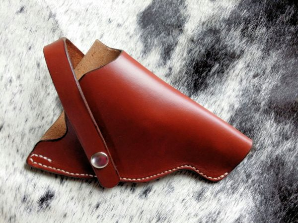 Governor Holster 2